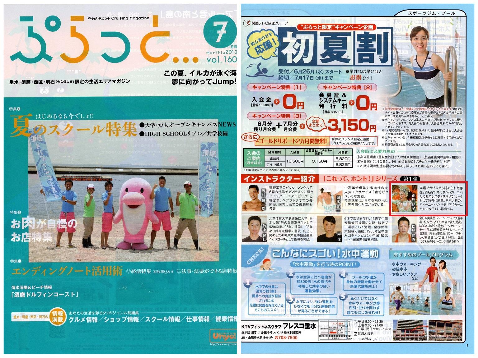 2013_07_plat.jpg